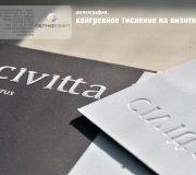 VIP визитки с конгревом